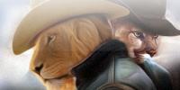 تثبيت OS X Mountain Lion